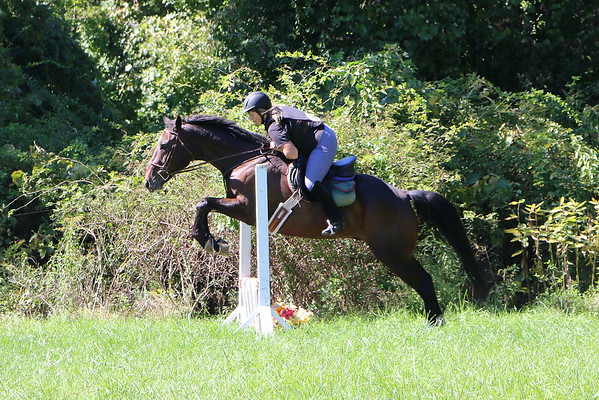 Tanheath Hunt Club Events