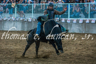 Gold Dust Rodeo 2016