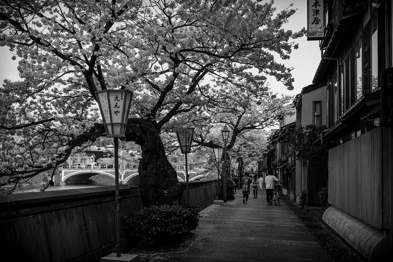 Kanazawa  080413 20 .jpg