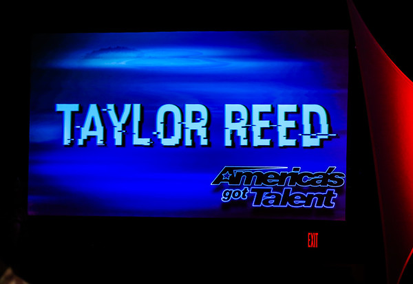 Taylor Reed live 2019