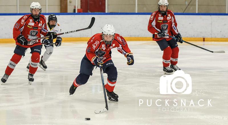 Göteborgs Ishockeycup, Pucksnackfoto