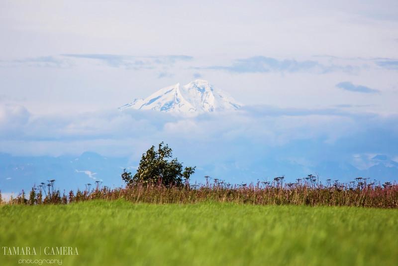 Volcano-4-2.jpg