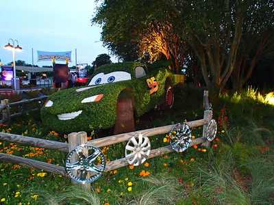DISNEY WORLD FLOWER & GARDEN 2013