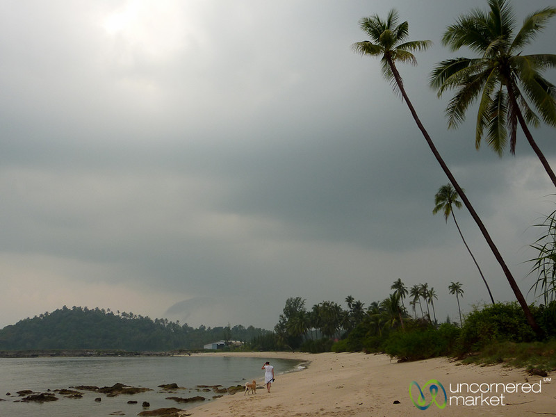 Walking the Dog on the Beach - Koh Samui, Thailand