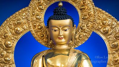A Contemplative Visit to the Deer Park Buddhist Center