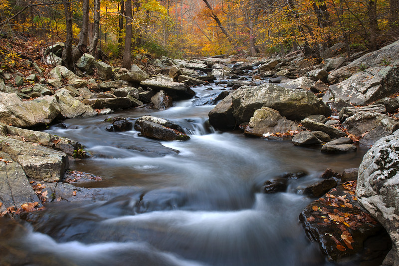 Hunting Creek and Fall Colors Eight.jpg