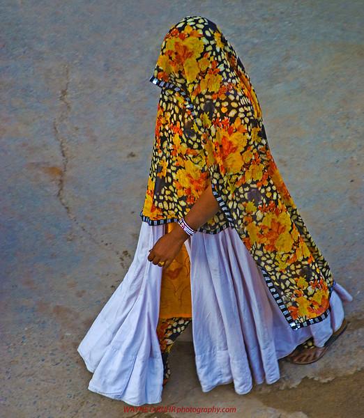 India2010-0204A-453A.jpg