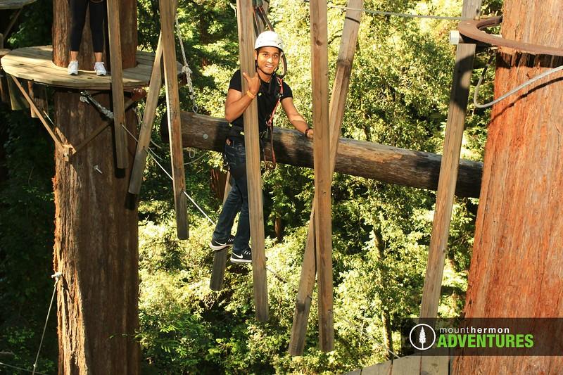sequoiaportrait_1559086034224.jpg