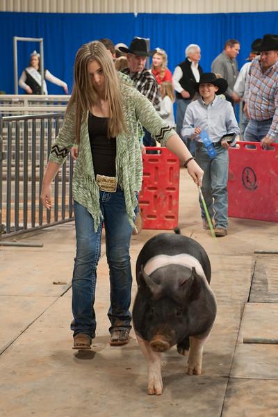 Hays County Show-9827.jpg