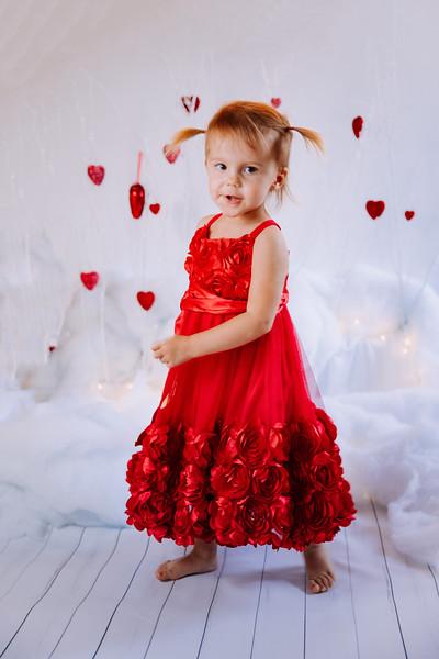 Red Rose Tulle Dress - Toddler