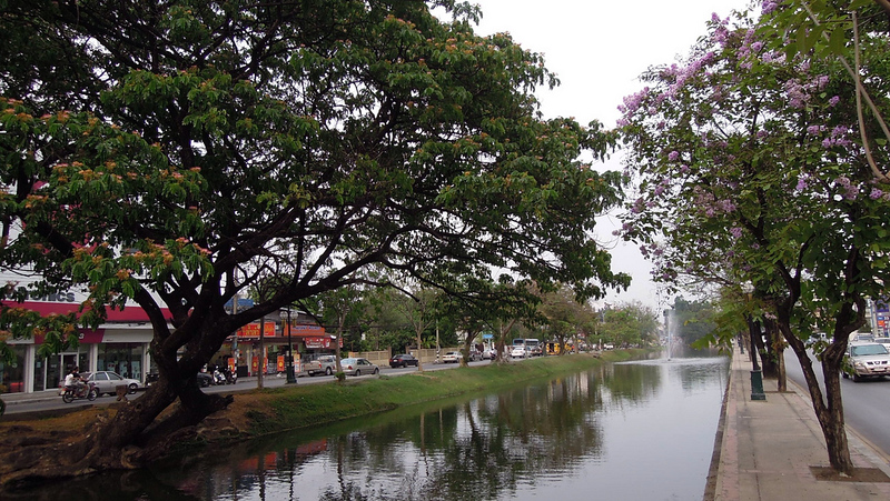 The Moat, Chiang Mai, Thailand