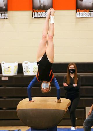 Dodge Point/Iowa-Grant Gymnastics 2-8-21