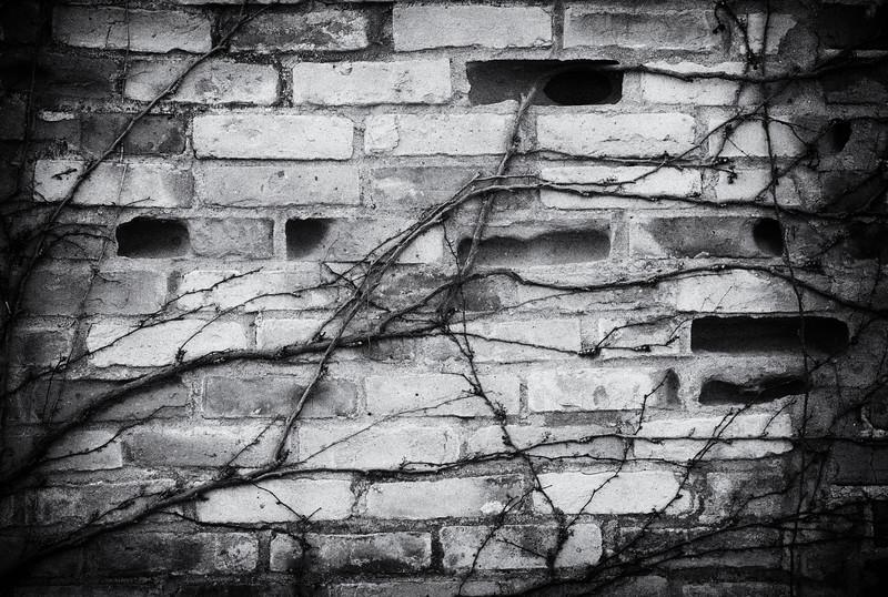 Carl Simmerman-100056-Edit.jpg