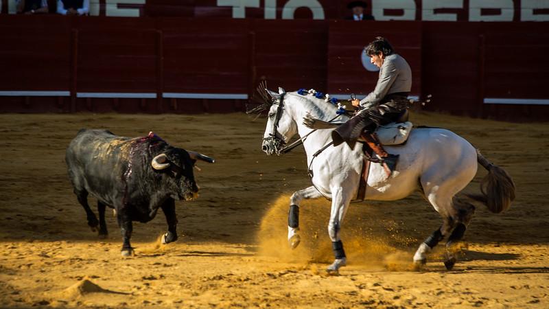 Bullfighting H9.jpg