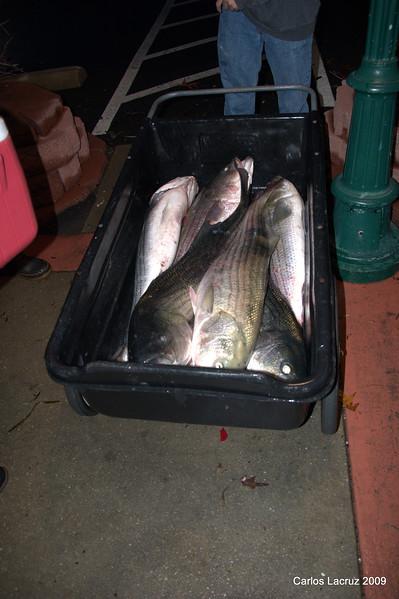 Lorton Fishing Trip-31.jpg