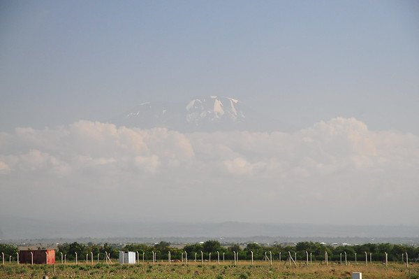 TNZ 2014-Kilimanjaro