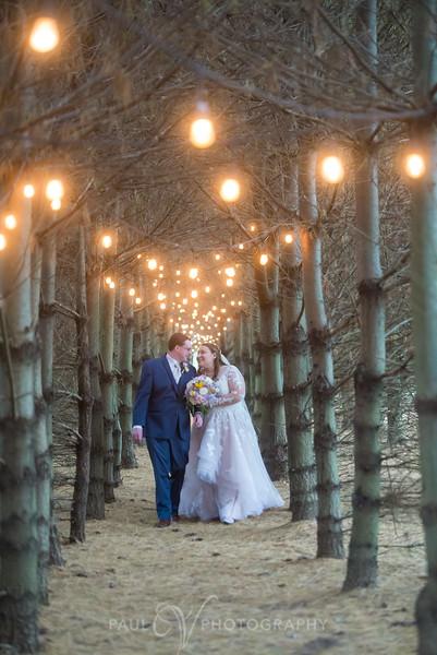 Emily and David's Wedding