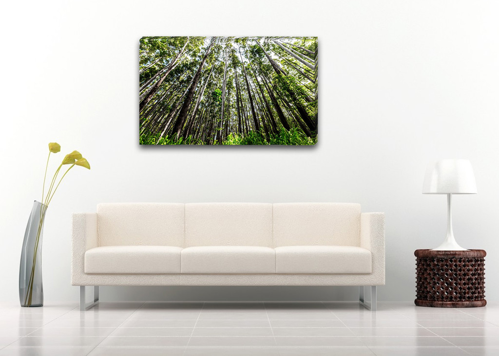 "$200    -    Surrounded    -    40"" x 24"" Gallery Wrap 1.5"" Canvas"