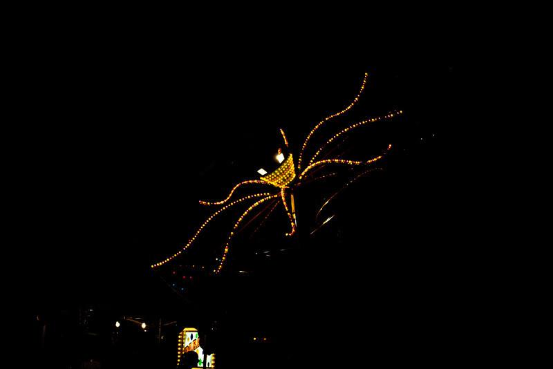 Nite-Spider_0780-2-www.jpg