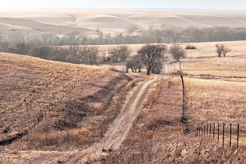 Coyne Creek Road, February
