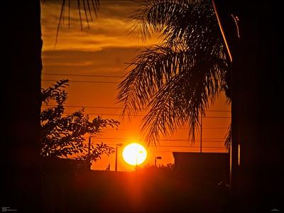 Daily sightings...2020-09-30...Neighborhood sunset