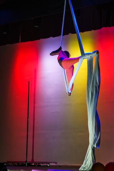 Kairos Circus Benefit-20150109-1286.jpg