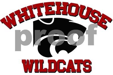 whitehouse-stops-hudson