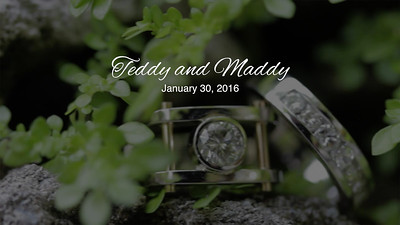 Teddy and Maddy