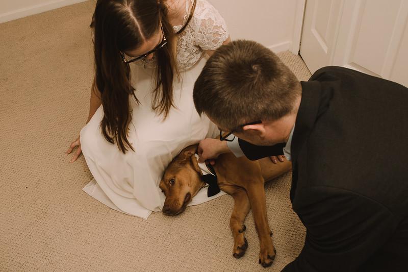 Jenny_Bennet_wedding_www.jennyrolappphoto.com-234.jpg