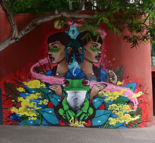 ECQ_6680-Lima Street Art.jpg