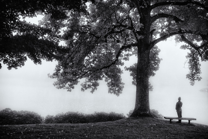 by the tree bw.jpg
