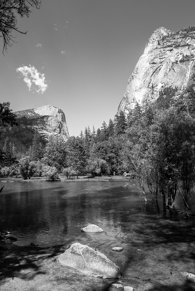 2019 San Francisco Yosemite Vacation 024 - Mirror Lake.jpg
