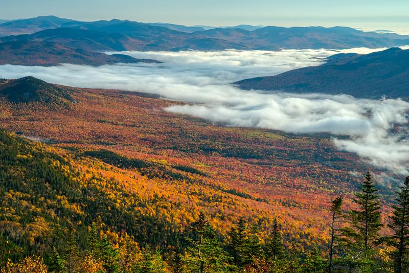 Maine Fall 2019-26.jpg