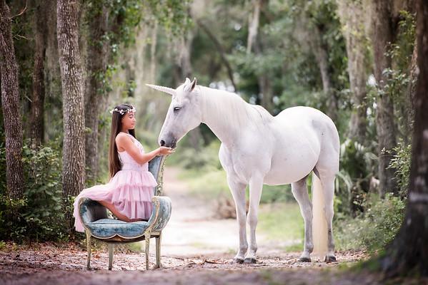 Unicorns June 2019 - Castro