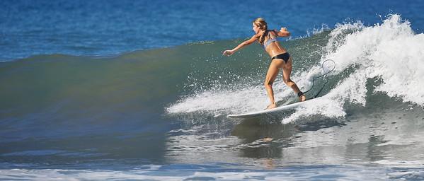 Surfer 8