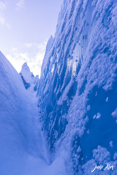 2020-01-17_Alaska Wild Guides-6102485-Juno Kim.jpg