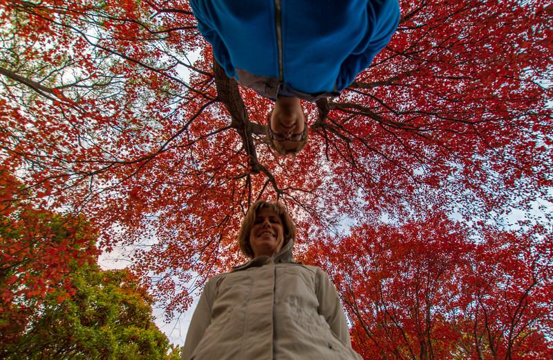 Fall-color-WingfootLake-Dawn-Elijah-Oct24.jpg
