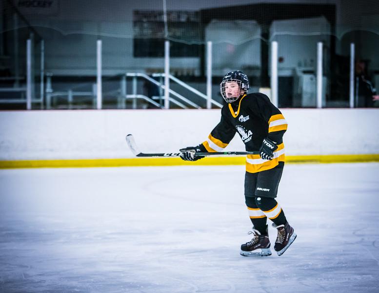 Bruins2-183.jpg