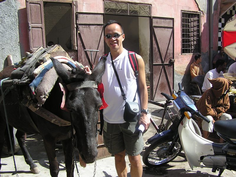 Jimmy_Horse_2.jpg