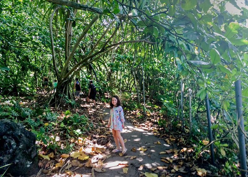 GirlsIn Hawaii_11.jpg