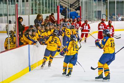 Women's Hockey - Queen's at York 20120217