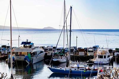 JPGMaalaea Harbor