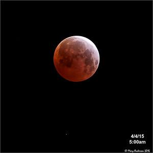 Lunar Eclipse 4/4/15