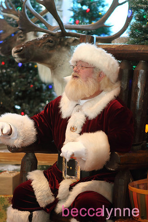 december 11. 2010 bass pro shop christmas