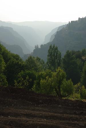 20100507 Dolina Quadisha (Kadisza)