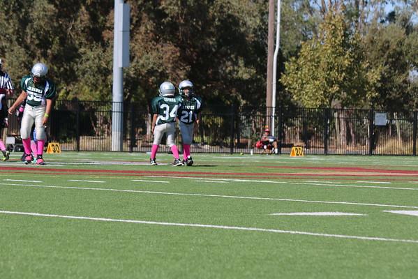 Jr Hawks Football 2015-2016