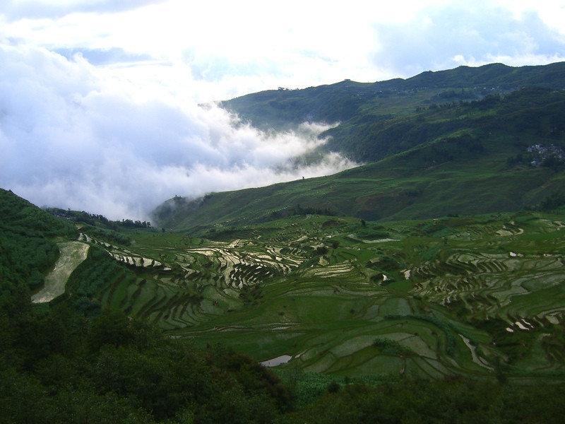 Yuanyang Cascading Terraces - Yunnan, China