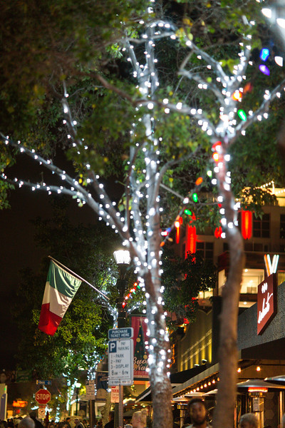 December SD-33.jpg