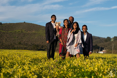 K Subramanian Family   Proofs