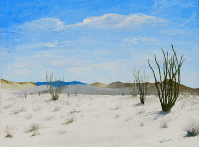 Ocotillo View 9x12 oil SOLD